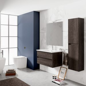 baños-modernos-fotos-Lerma